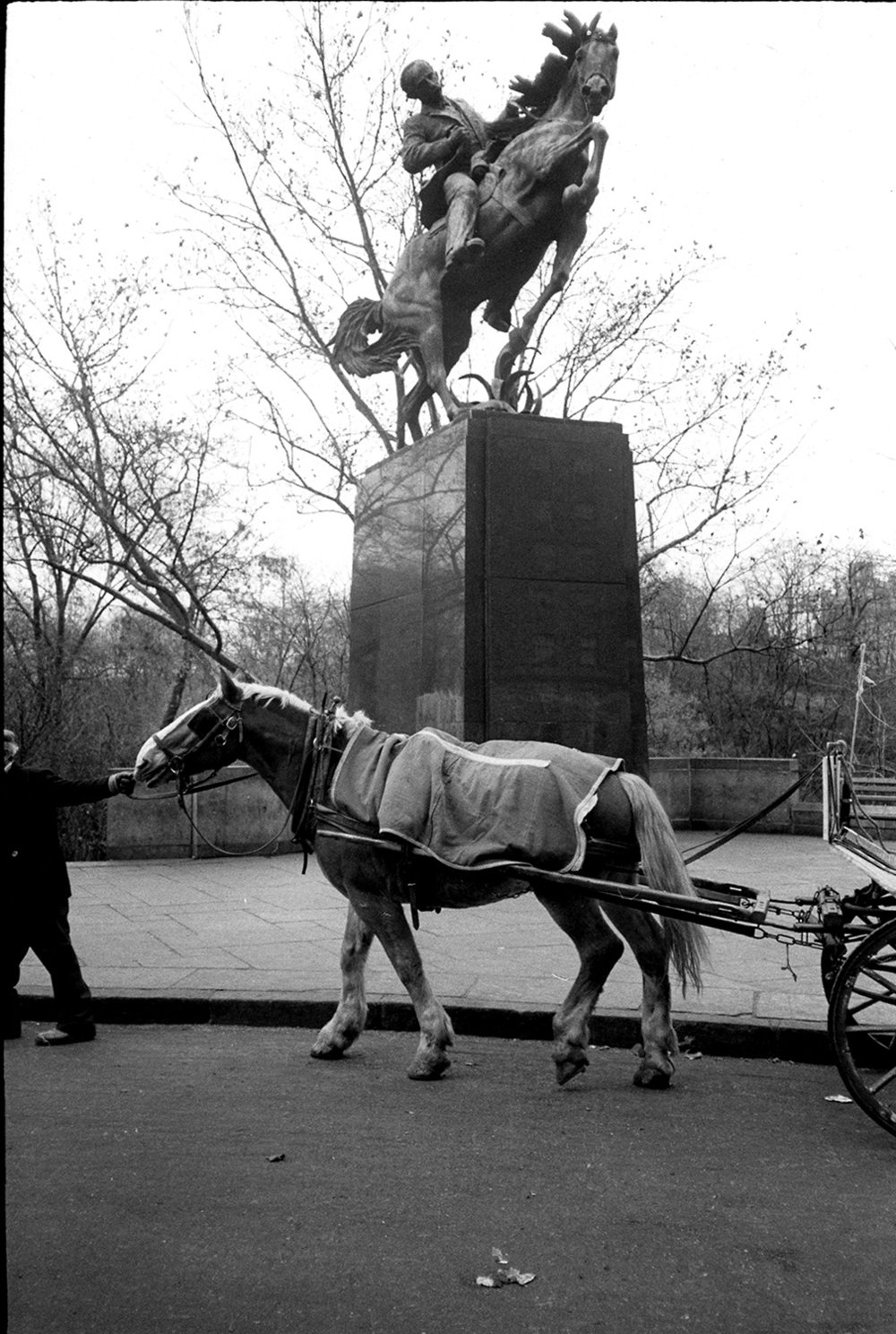 carriage horse&statue.jpg
