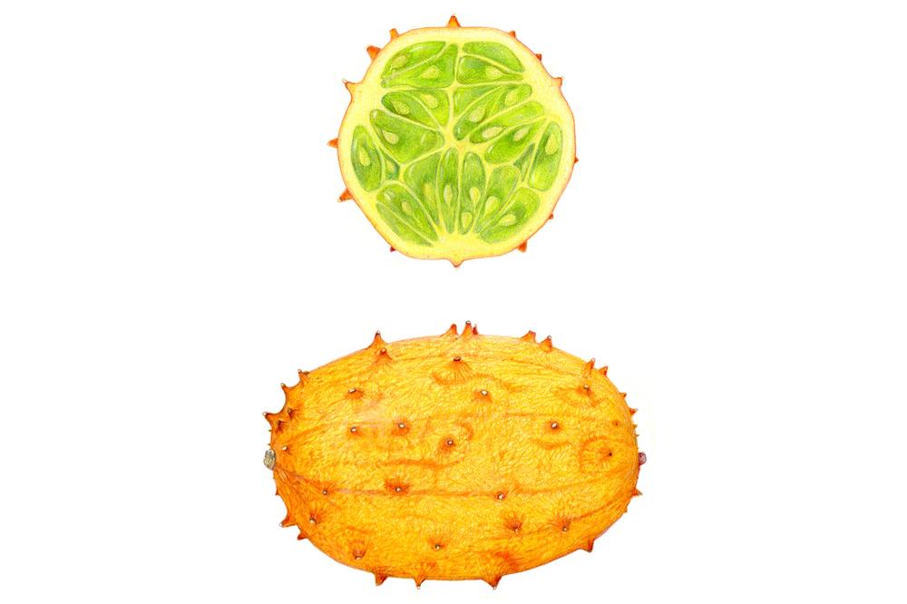 http://www.sarahmelling.com/2014/09/horned-melon.html