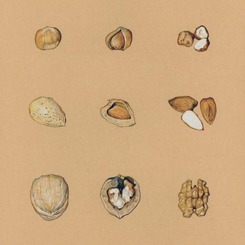 nuts500.jpg