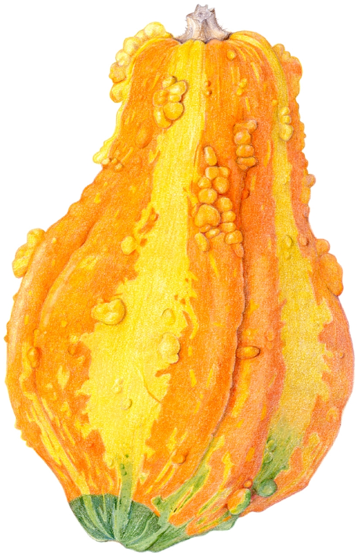 Gourd_calendar.jpg