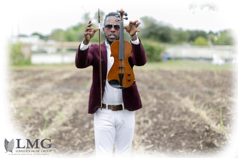 FLy Violin.jpg