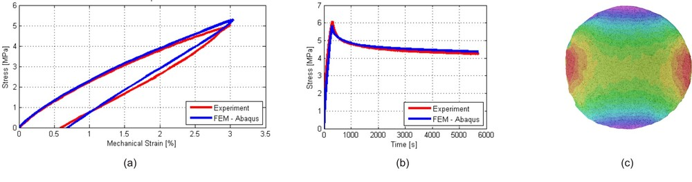 Comparison between experimental measures and numerical simulation of LLDPE membranes under uniaxial tension loading/unloading test at room temperature (a) and uniaxial long-duration tension test at +10°C (b). Strain distribution along horizontal direction for bubble inflation test at -30°C (c).