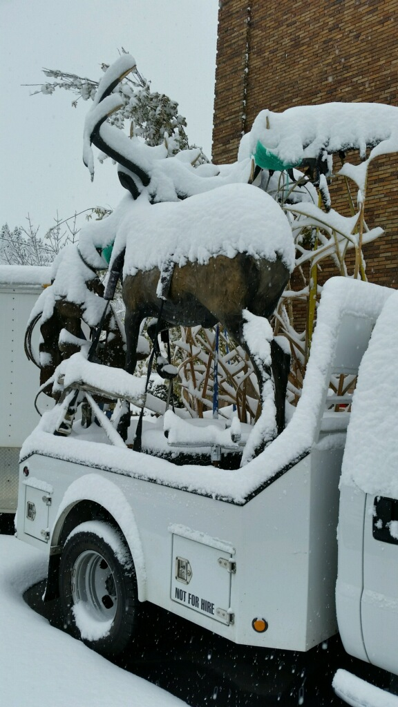 Snowy Bronze.jpg
