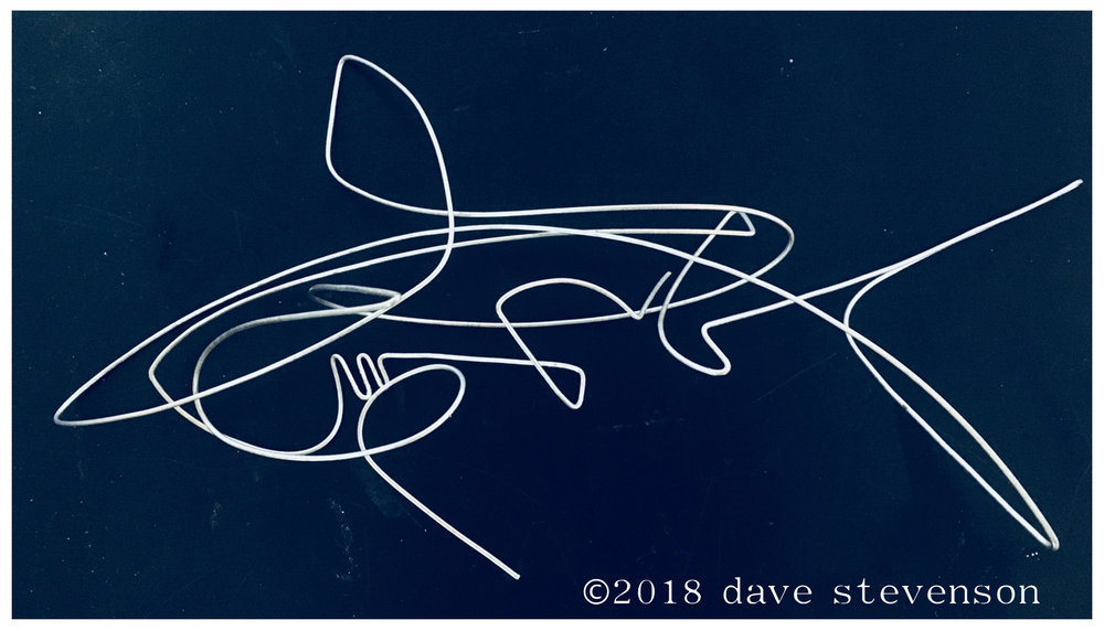"I've always wanted to abstract a sleek and fearsome shark, so this is my first stab at the stunning  Caribbean Reef Shark , created during the wintry mix of sleet n snow that pounded the City today. The next step is to enlarge this 12"" wire drawing to my normal ""working scale"" of about 2.5-3 feet, then add mass to the wireframe with foam and resin. If I manage to capture the formidable power, speed & beauty of this graceful predator, I'll mold it & cast it in stainless steel!"
