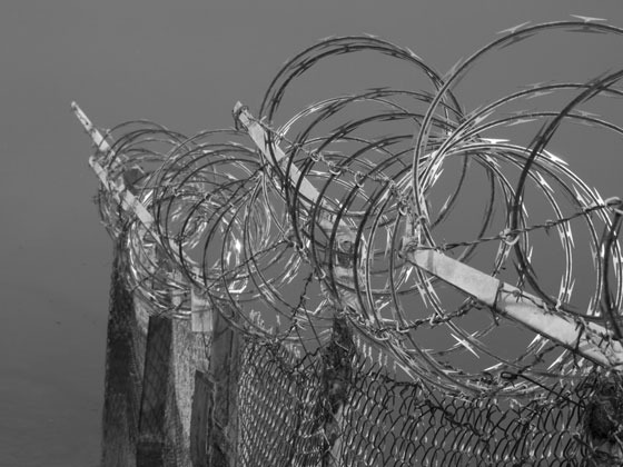 D128_BarbedWire