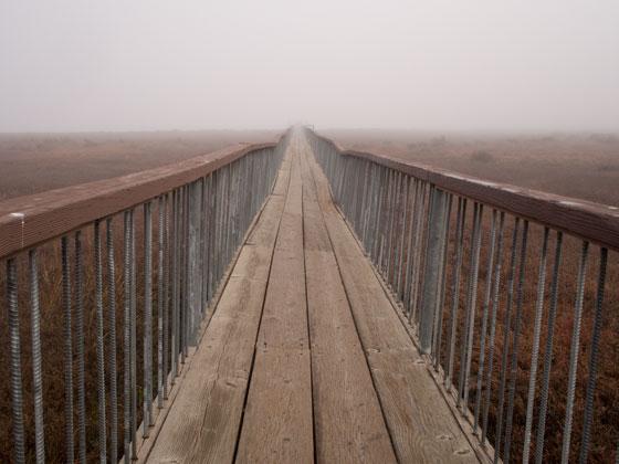 D193_Walkway