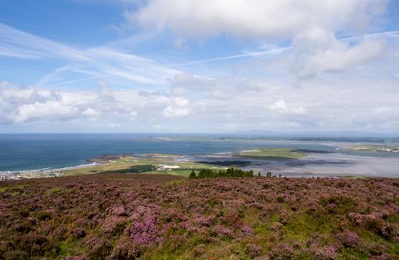 View to the Atlantic © 2014 Teri Vershel
