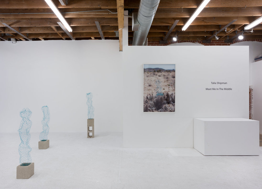 Talia Shipman 'Meet Me in the Middle', installation view, Chimento Contemporary. Photo: Ruben Diaz