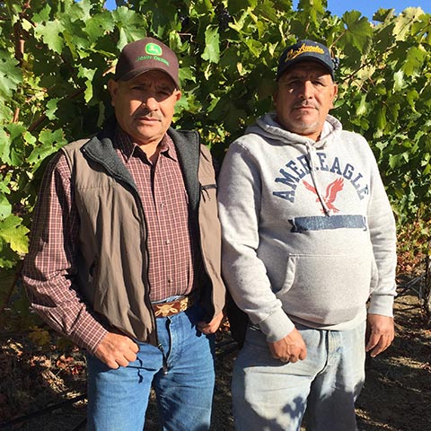 Jesus & Jose Lopez   Farming / Vineyard Operations