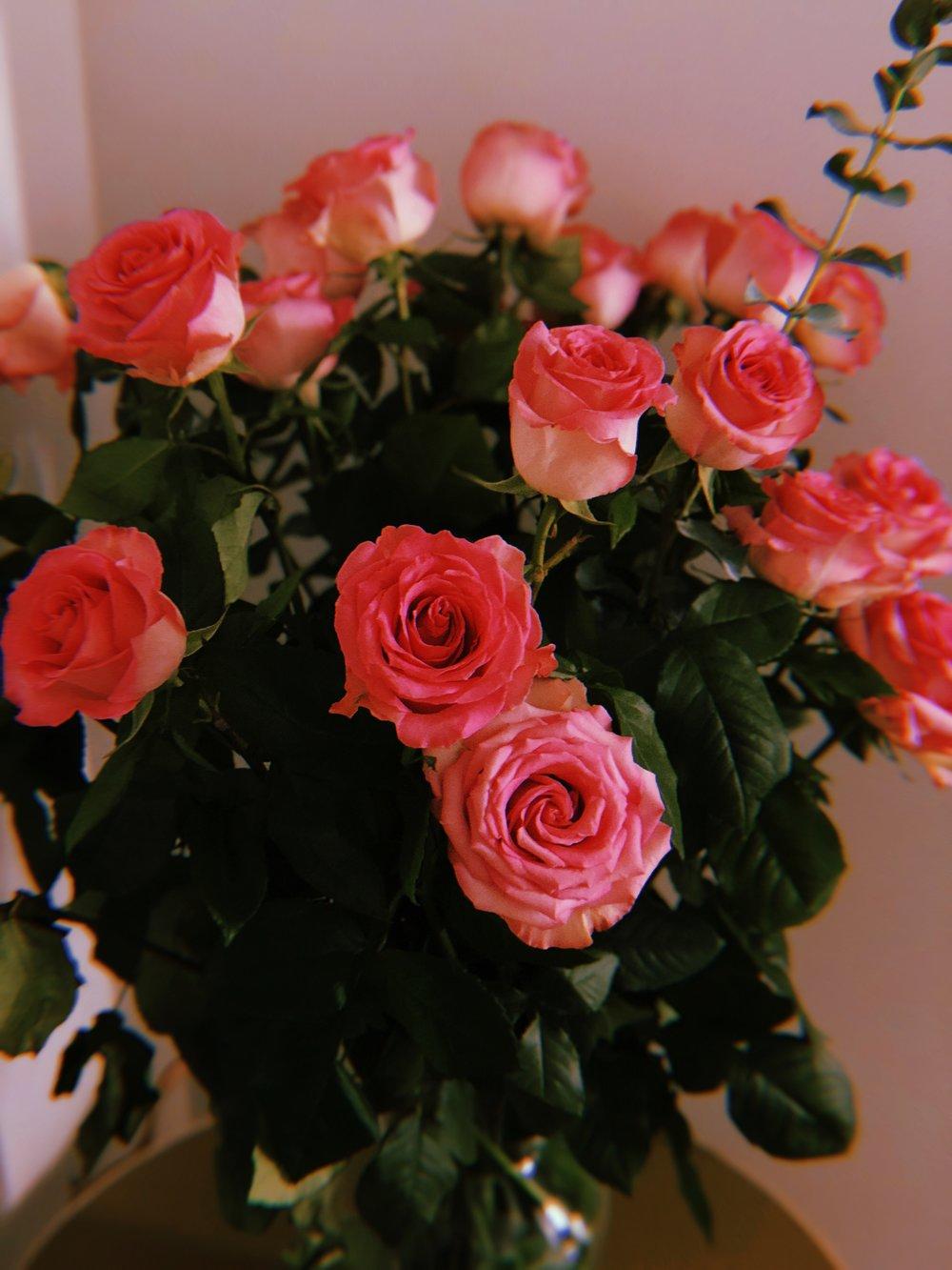 snackface-nyc-roses.jpg