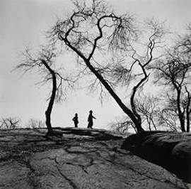Gerda Peterich, Central Park Strollers