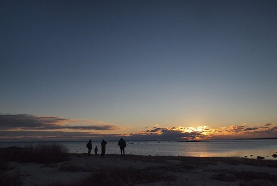 Better Than TV. (Photo By Kari Amick)