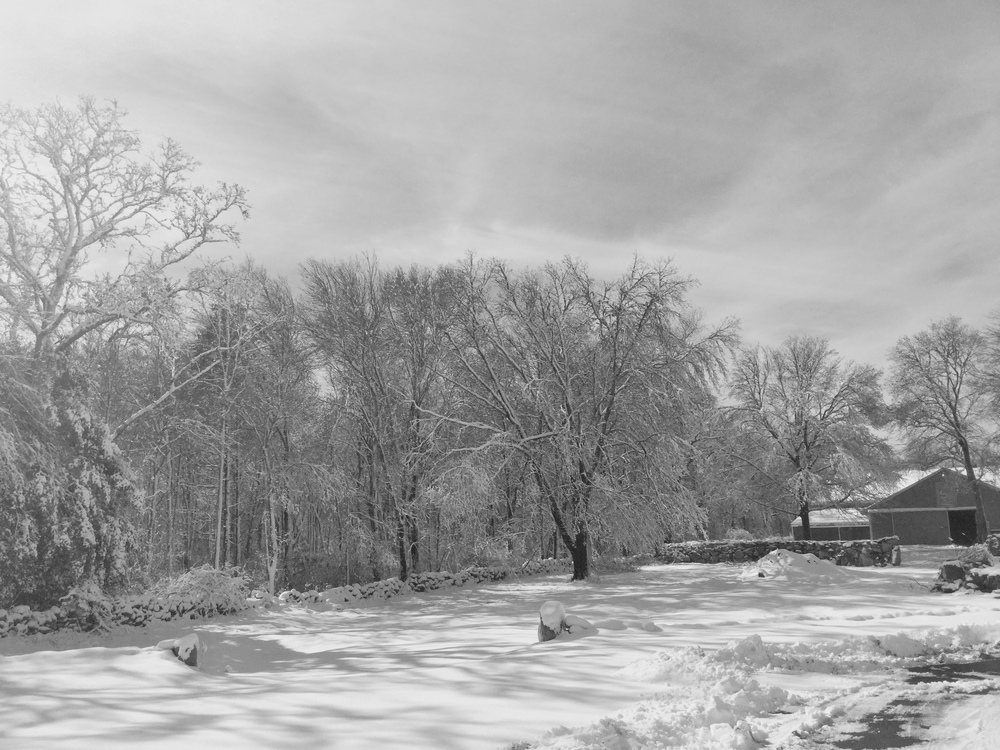 Mornings in Little Compton