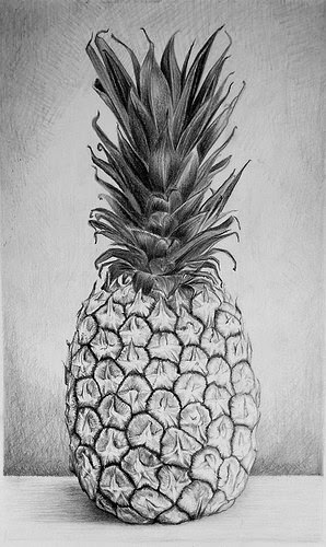 """Pineapple'' (graphite on bristol board), by Hillary Irvine, in the show ""Fresh,'' at the Rocky Neck Art Colony, in Gloucester, Mass., through March 12. The pineapple has long been a symbol  in New England of welcome, which is odd since we don't grow them here (maybe in a few years we can....)"