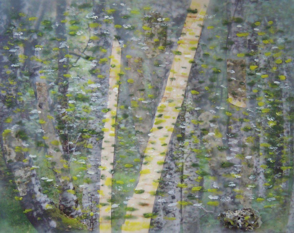 """Birches"" (encaustic painting), by Nickerson Miles."