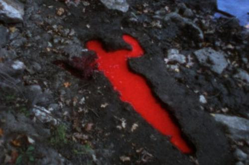 Still from Ana Mendieta's  Silueta Sangrienta,  (1975.  Super-8mm film transferred to high-definition digital media, color,  silent,1:51 minutes), in her show at the Colby College Museum of Art, Waterville, Maine, through Dec. 17.   The remarkably large and rich museum says the film focuses on an indent in the ground shaped like  Mendieta's  body. The body is first shown naked, then it disappears, and then   it suddenly   fills with red paint before she reappears in it face-down. The two-minute film is quite unnerving.