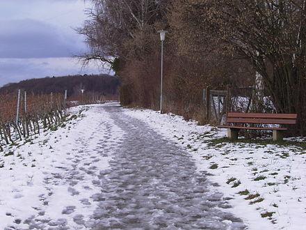 thaw.jpg