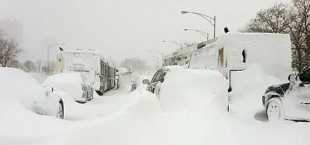 Cars_covered_in_Snow_on_Lake_Shore_Drive_Chicago_Feb_2_2011_storm.JPG