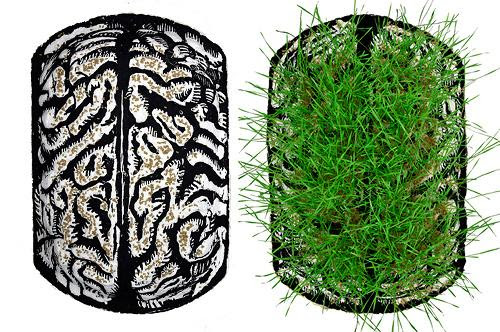 """Print Life: Neurogenesis, from Seed to Growth "" ( molded paper woodcut with wheat berry seeds, and flipbook) ,  by Eric Avery, in the ""2017 North American Print Biennial,'' at the Lunder Arts Center at the Lesley University of Art and Design, Cambridge, Mass., through March 4."