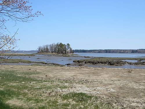 Looking toward Great Bay at low tide.