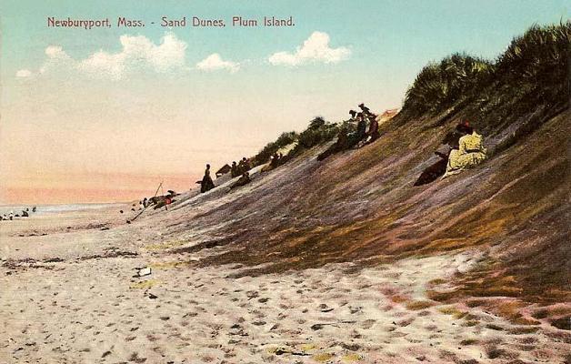 Sand_Dunes,_Plum_Island,_MA.jpg