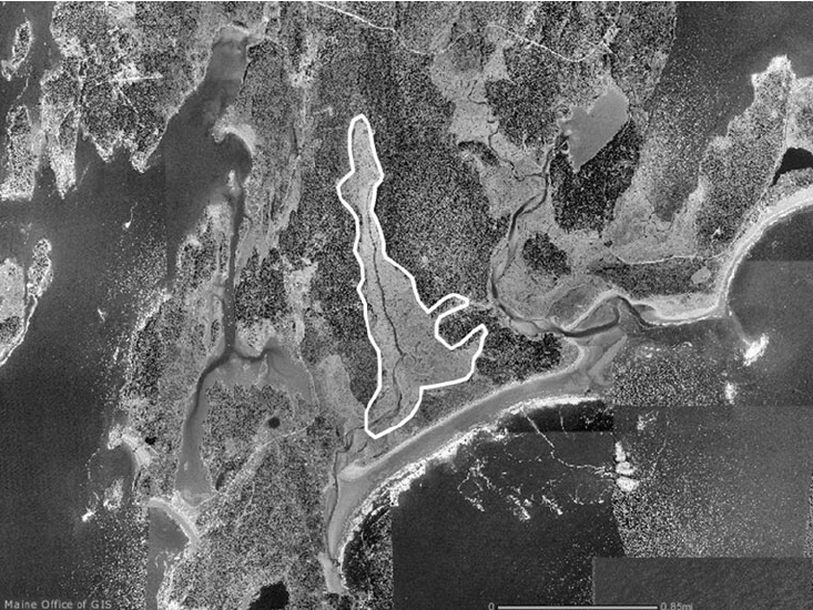Sprague River Marsh- Phippsburg, Maine.White line represents study area boundary.