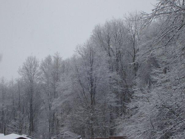 Snow_DuBois.jpg