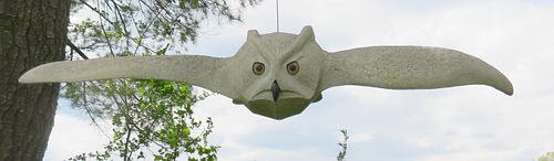 """""""Turning Great Horn Owl'' (granite), by Andreas von Huene ,at the Mill Brook Gallery and Sculpture Garden, Concord, N.H."""