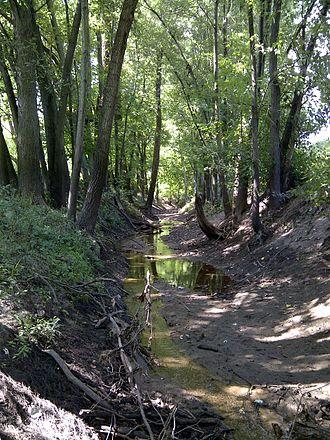 Stevens_Creek_Tributary_A_in_Macon_County,_IL.jpg