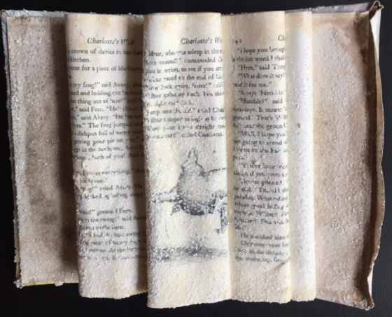 """Charlotte's Web'' (crystallized book), by Georgia Heard, at Patricia Ladd Carega Gallery, Center Sandwich, N.H."