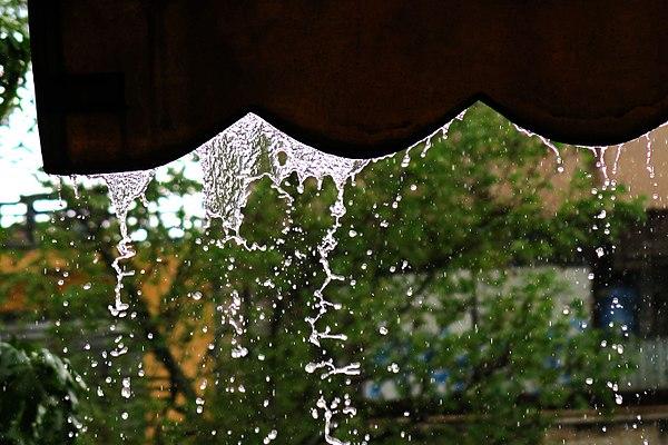 600px-RainDrops1.jpg