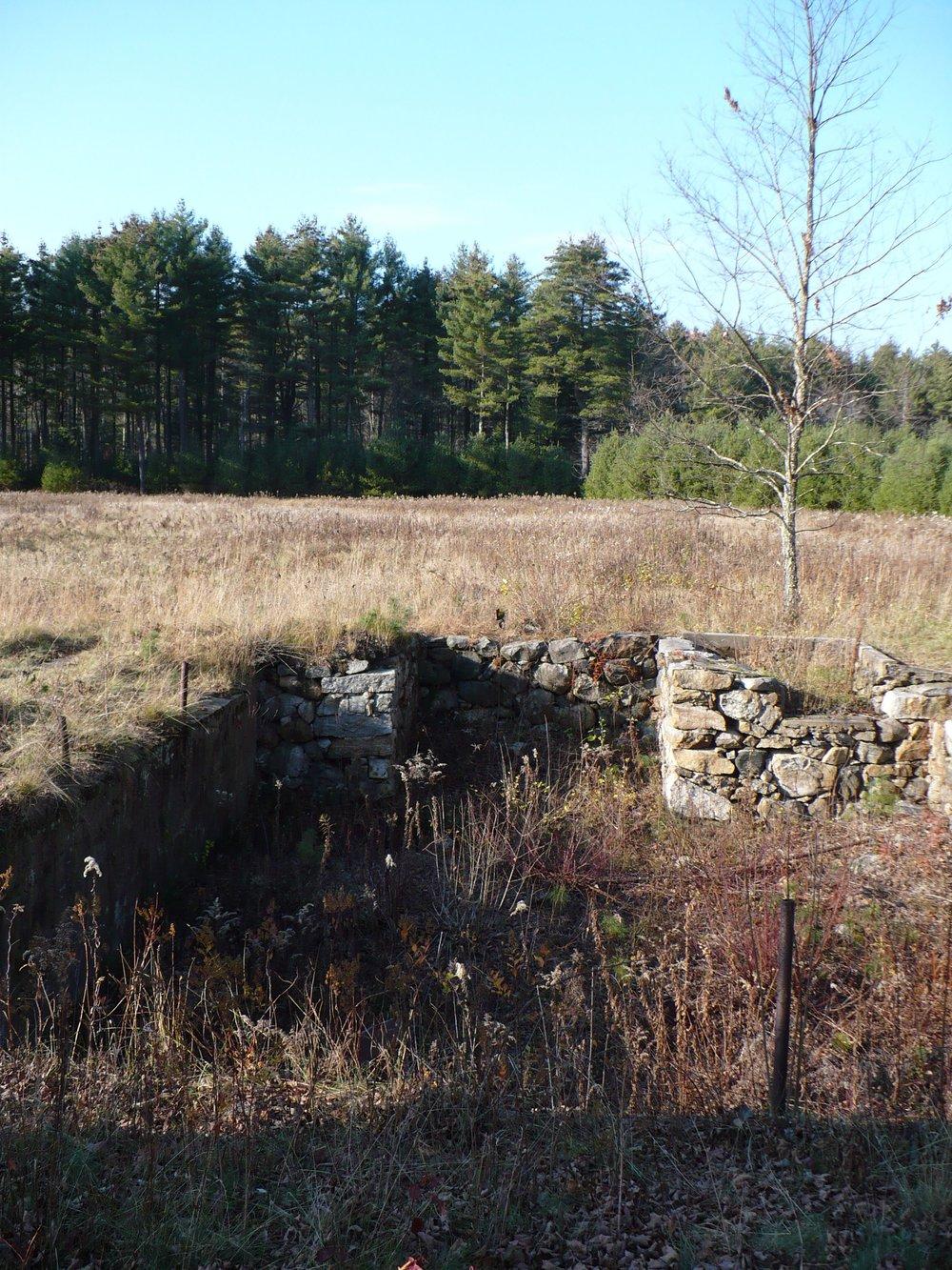 Cellar hole in Dana, Mass.