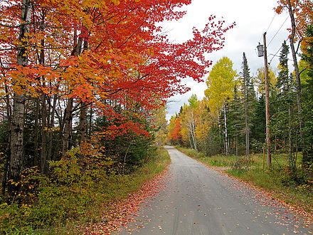 Back road in Stratton, Maine.