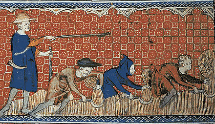 Depiction of  harvesting in the August calendar page of the  Queen Mary Psalter (fol. 78v), ca. 1310.