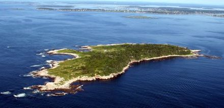 Ragged Island, in Casco Bay, from above.