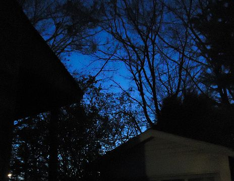 464px-Deep_blue_sky_in_twilight_with_trees_and_garage.JPG