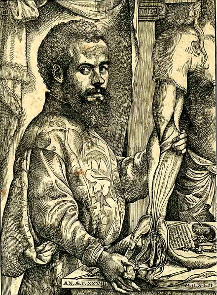 16th Century anatomist Andreas Vesalius has lessons for talking about the humanities.