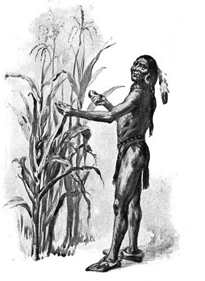 The Wampanoag chief Squanto helped teach the Plymouth Colony how to grow corn.