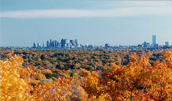 The Boston skyline from Belmont.
