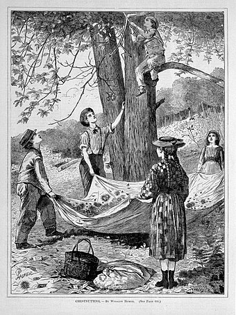 """Chesnutting'' (wood engraving) , by    Winslow Homer    (1836-1910)."