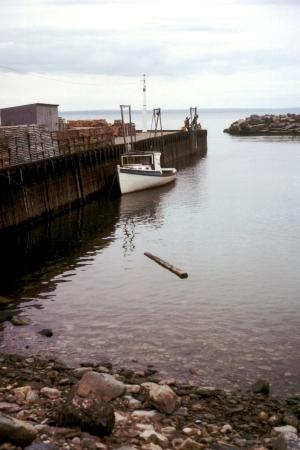 Bay_of_Fundy_High_Tide.jpg
