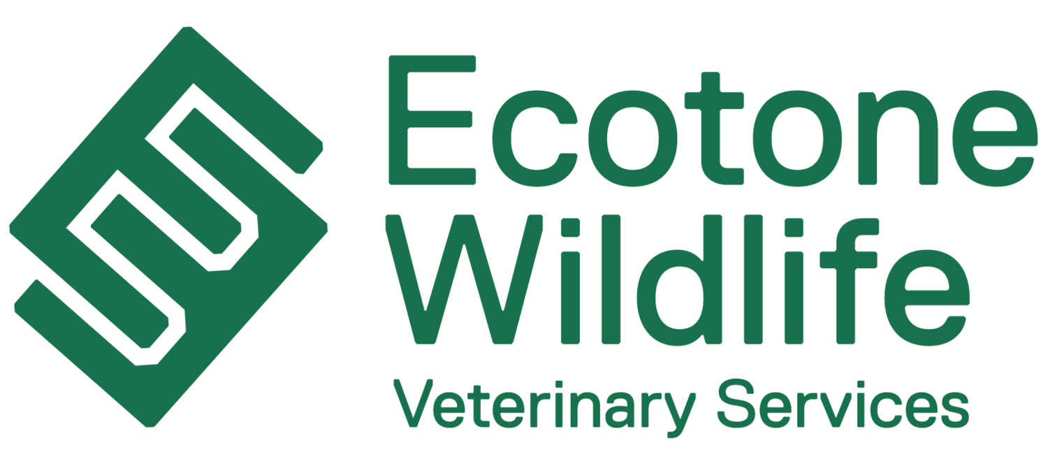 Ecotone Wildlife Veterinary Services