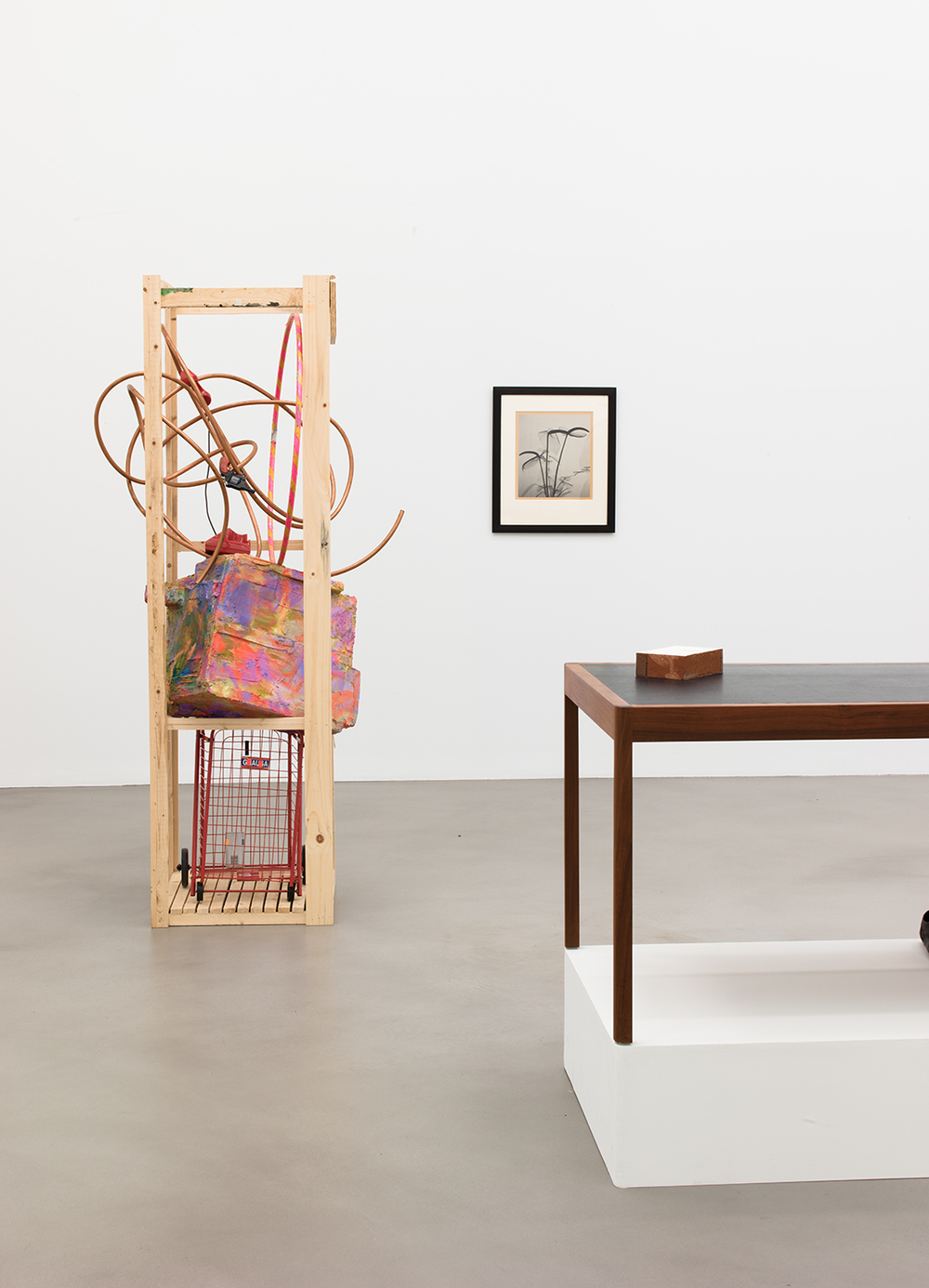 A Machinery for Living , Petzel, New York, NY, 2014.    Rachel Harrison, Dr. Dain L. Tasker, BassamFellows, and Claire Fontaine
