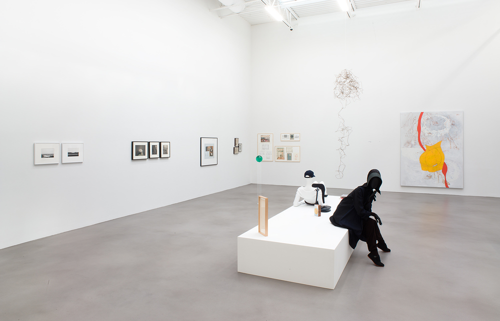 A Machinery for Living , Petzel, New York, NY, 2014.    Lewis Baltz, Jan Groover, Christopher Williams,Rudi Gernreich,Lucy McKenzie, Craig Kauffman, Atelier EB, Claire Fontaine, and James Welling
