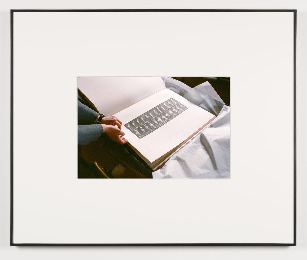 Der Herrscher (Paris, France, March 12, 2013)    2014   Chromogenic print  13 1/2 x 20 inches   Art Handling, 2011–
