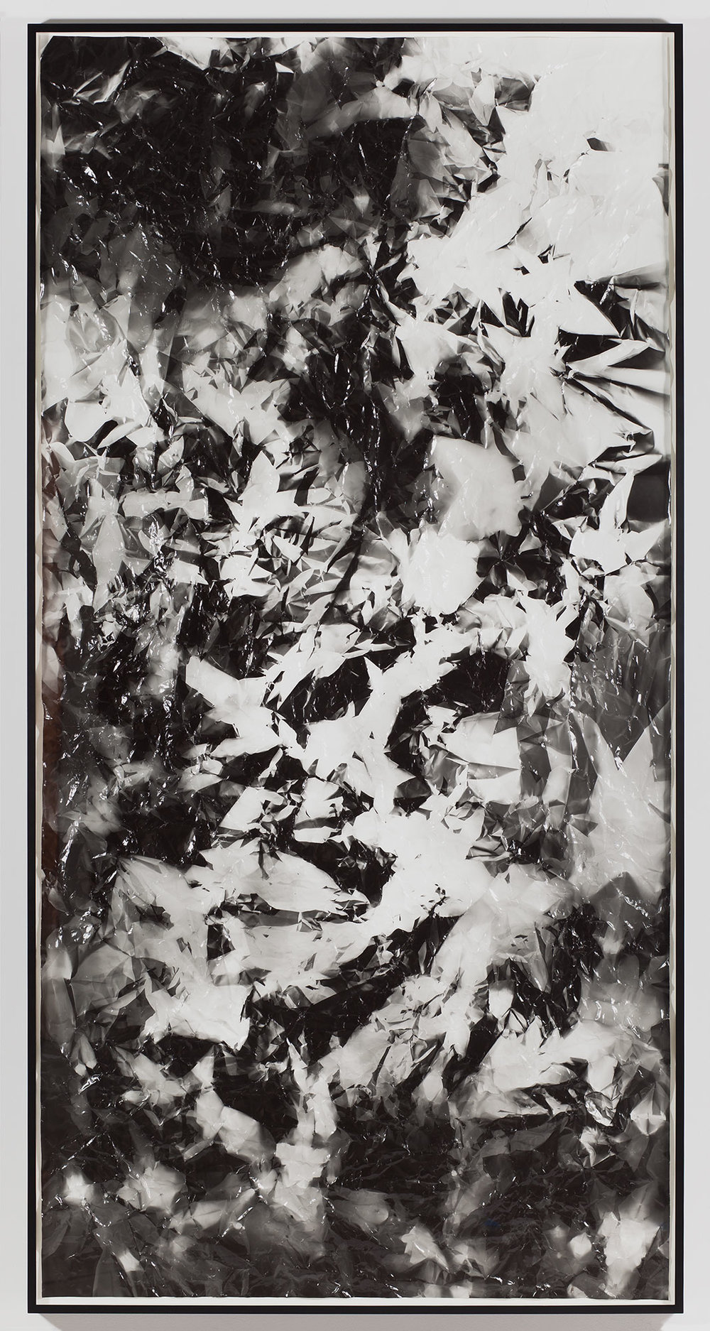 Picture Made by My Hand with the Assistance of Light    2011   Black and white fiber based photographic paper  113 x 55 inches
