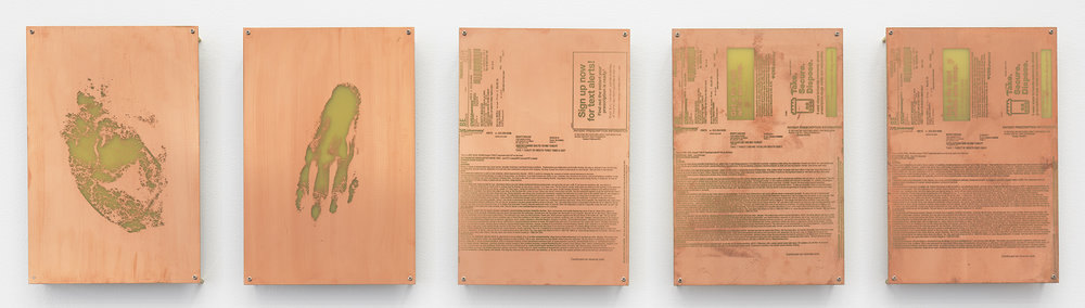Body Print (Coxa and Attending Soft Tissues, Right Dorsum, Amphetamine Salts 10 mg Tablet, Valsartan 160 mg Tablet, Citalopram HBr 20 mg Tablet)    2017   Etched copper-clad FR-4 glass-reinforced epoxy laminate board  12 x 8 inches each, 5 parts   Body Prints, 2017–