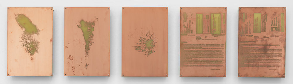Body Print (Right Clavicle and Attending Soft Tissues, Left Carpal and Attending Soft Tissues, Right Pectoral, Voltaren 1% Gel, Alprazolam 0.5 mg Tablet)    2017   Etched copper-clad FR-4 glass-reinforced epoxy laminate board  12 x 8 inches each, 5 parts   Body Prints, 2017–