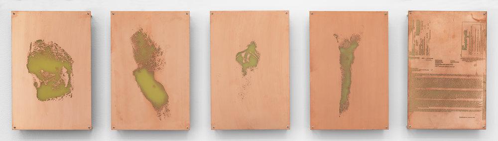 Body Print (Popliteal Fossa, Left Antebrachium, Right Antebrachium, Right Carpal and Attending Soft Tissues, Fluticasone Prop 50 mcg Spray)    2017   Etched copper-clad FR-4 glass-reinforced epoxy laminate board  12 x 8 inches each, 5 parts   Body Prints, 2017–