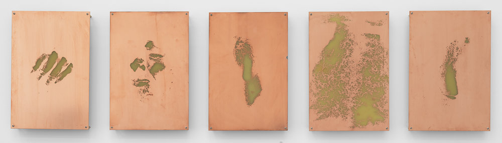 Body Print (Right Metacarpophalangeal Joint and Attending Soft Tissues, Right Zygomatic Bone and Attending Soft Tissues, Left Lateral Epicondyle, Abdomen, Right Lateral Epicondyle)    2017   Etched copper-clad FR-4 glass-reinforced epoxy laminate board  12 x 8 inches each, 5 parts   Body Prints, 2017–